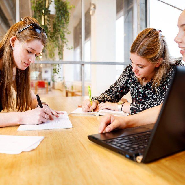 Wat kan een stagiair voor jouw bedrijf/organisatie betekenen?