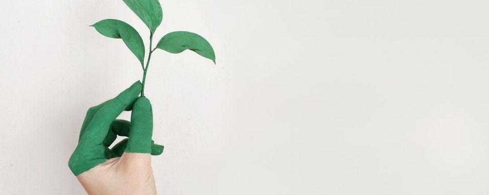 Starten met een duurzame bedrijfsvoering